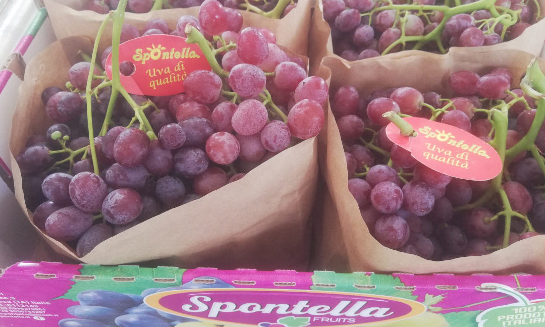 Spontella Fruits: season 2019 growth against the trend